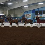 Pictou Fair Day 2-131