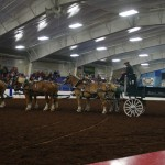 Pictou Fair Day 2-133