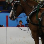 Pictou Fair Day 2-134