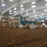 Pictou Fair Day 2-135