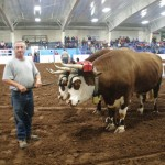 Pictou Fair Day 2-139