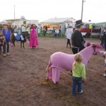 Pictou Fair Day 2-150