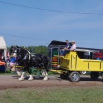 Pictou Fair Day 3-115