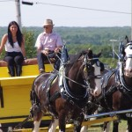 Pictou Fair Day 3-124