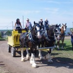 Pictou Fair Day 3-127