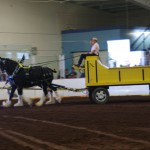 Pictou Fair Day 3-129