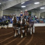 Pictou Fair Day 3-135