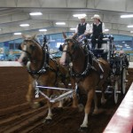 Pictou Fair Day 3-136