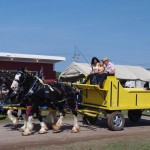 Pictou Fair Day 3-142