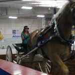 Pictou Fair Day 3-147