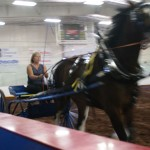 Pictou Fair Day 3-148