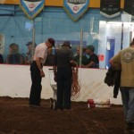 Pictou Fair Day 3-175