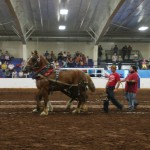 Pictou Fair Day 3-181