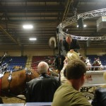 Six Horse Clydesdale Hitch-127